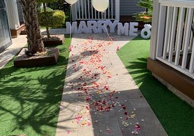 הצעת נישואין בטבע