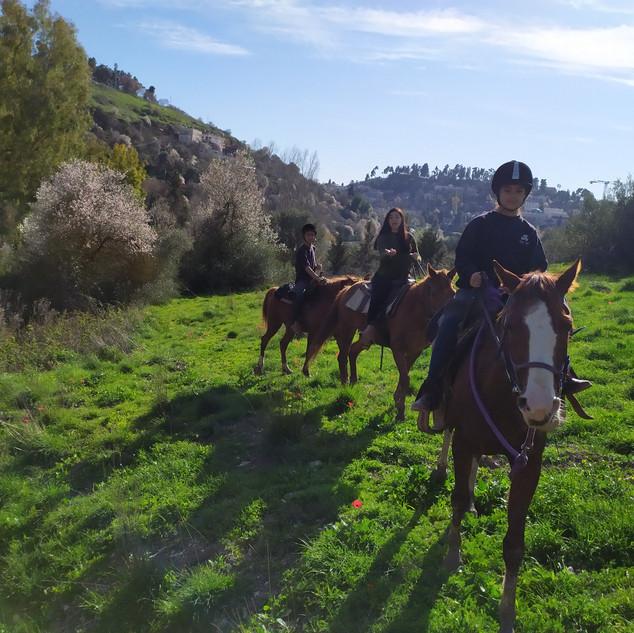 טיולי סוסים קסומים ברחבי הגליל
