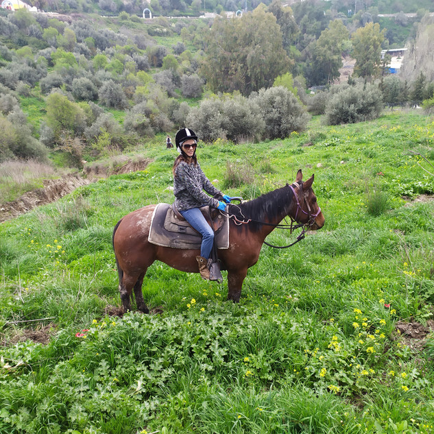 טיול סוסים בגליל