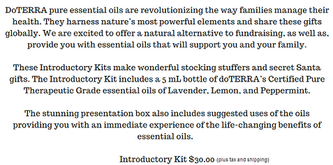 Intro kit Fundraiser 2.png