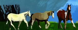 WILD HORSES ON PORTMEADOW