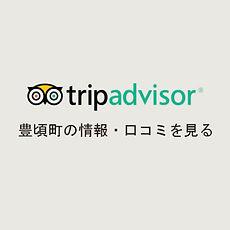 tripadviser-icon.jpg