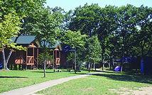 森林公園-715x448.jpg