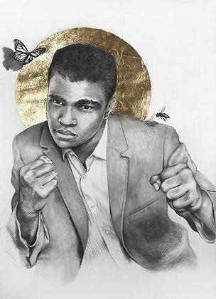 16 x 20 Portrait Print of Muhammad Ali Drawing by Lauren Clayton