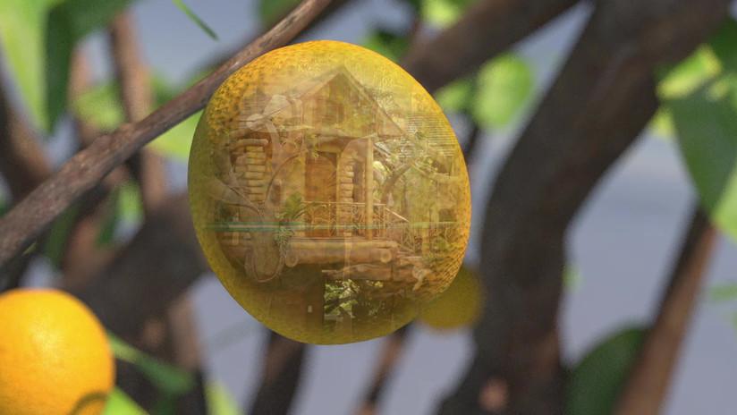 Tree Edit-1.m4v