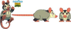 PG_Possum.jpg