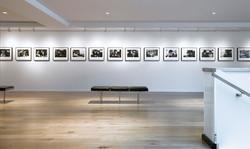 04-Leica-Los-Angeles-IA-Interior-Architects-Art-Gray1