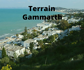 Terrain Gammarth