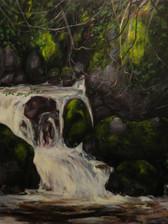 Fern Grotto