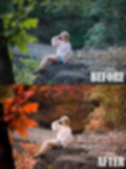 fall2.jpg
