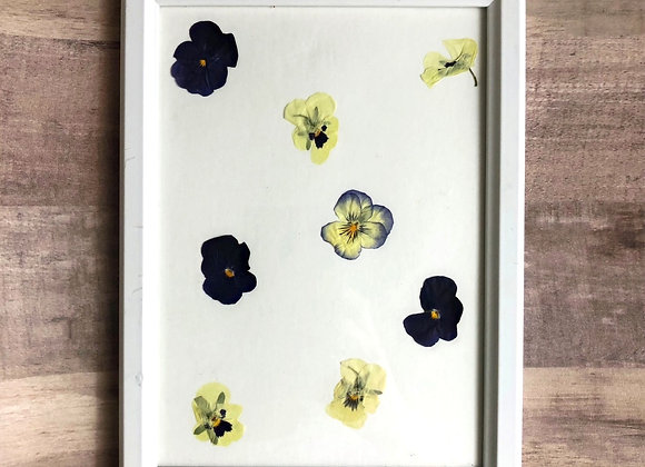 Pressed Pansies in White Picture Frame