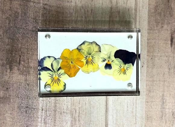 Mini Pressed Flowers in Acrylic