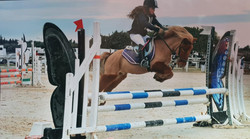 Concours saut obstacle