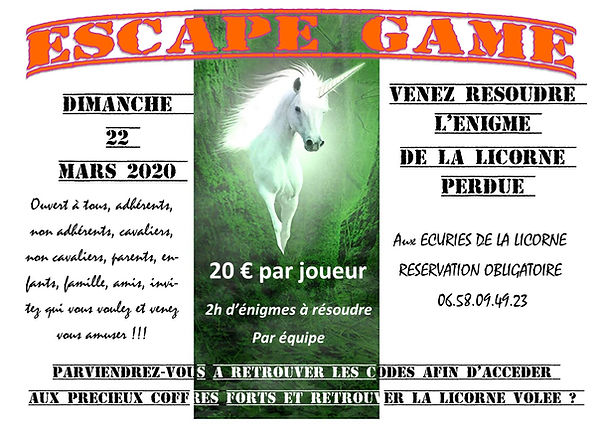 Affiche escape game la licorne perdue.pu