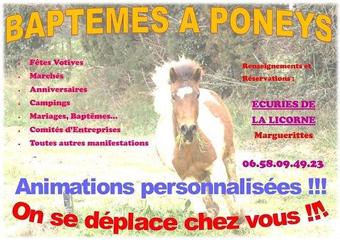 Affiche+Baptêmes+à+poneys+versio++image.