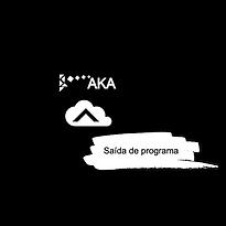 program_output.png