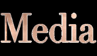 mediatemp.png