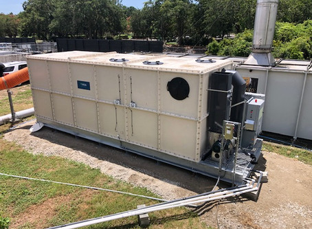 Biological Odor Control for Municipal Wastewater Collection Systems