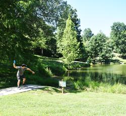 disc golf 15