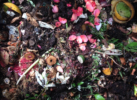 Death, Transformation, and the Virtues of Composting