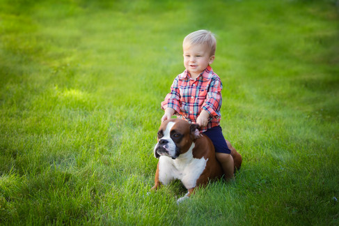 1 Year old boy playing with dog boxer in grass by bmariephotography