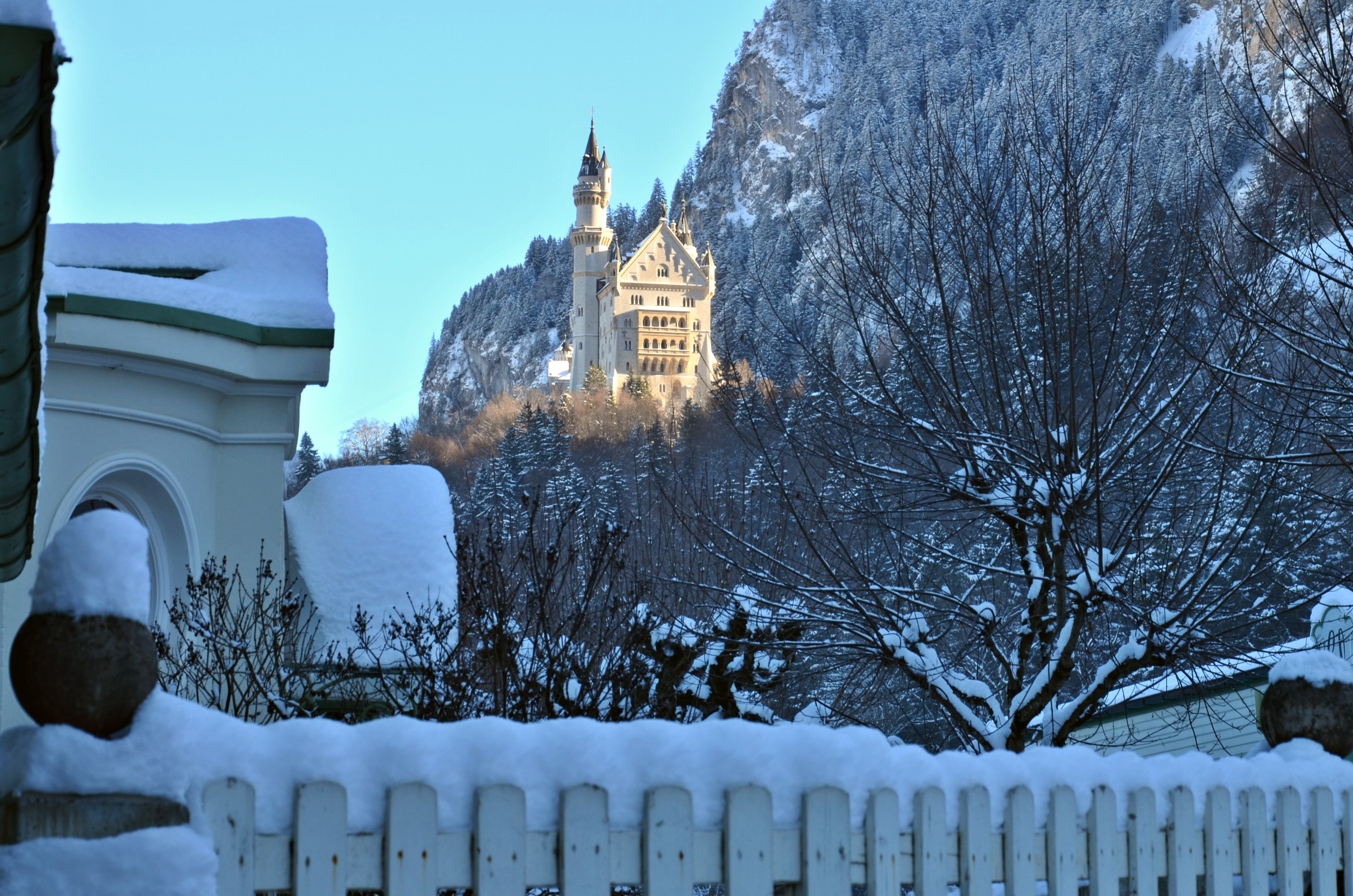 W0175_Übern_Zaun_Schloss_Neuschwanstein.jpg