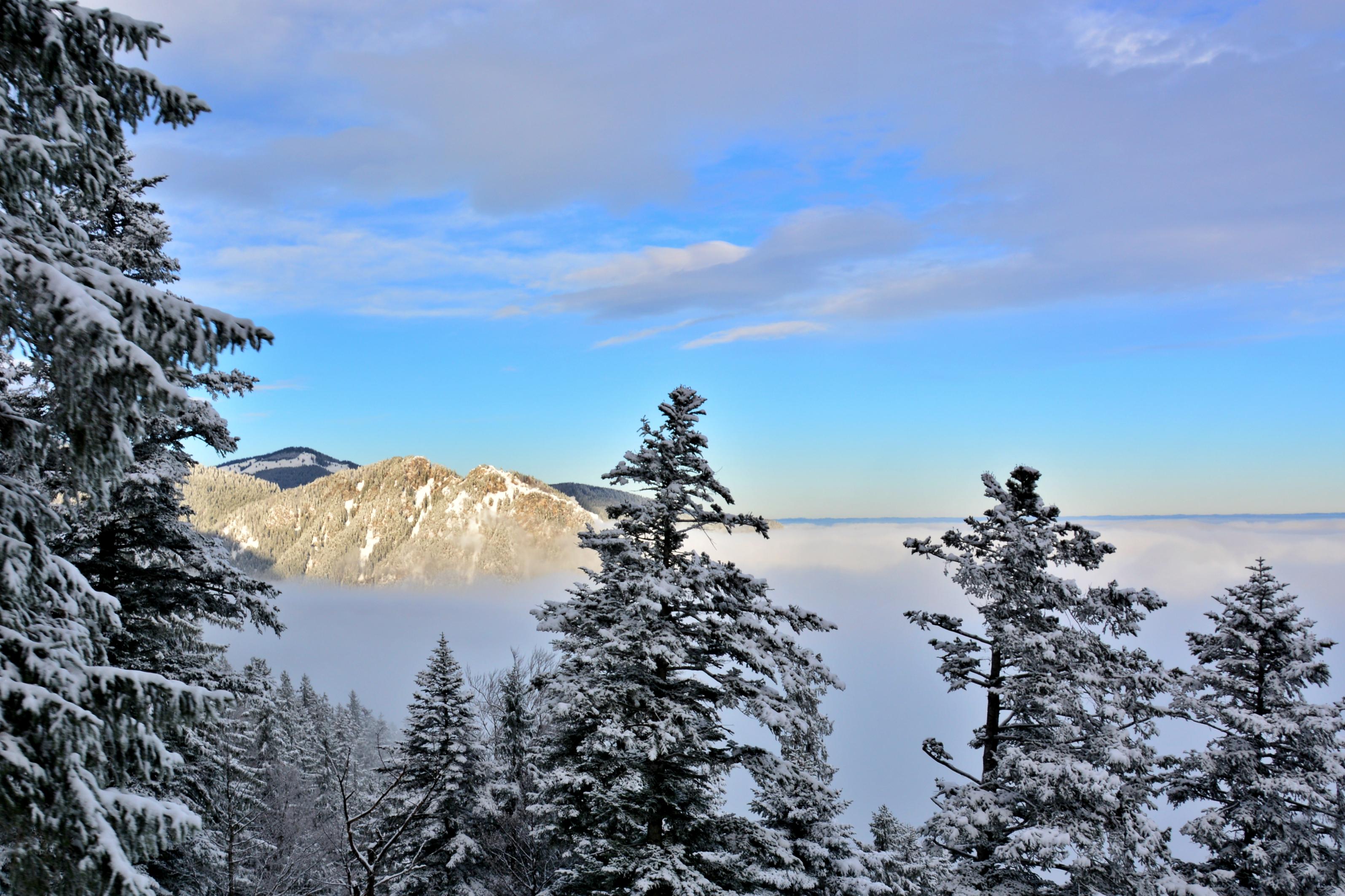 W0274 Winterlandschaft obheiter Breitenberg.jpg
