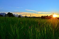 S0019 Sonnenuntergang am Bannwaldsee