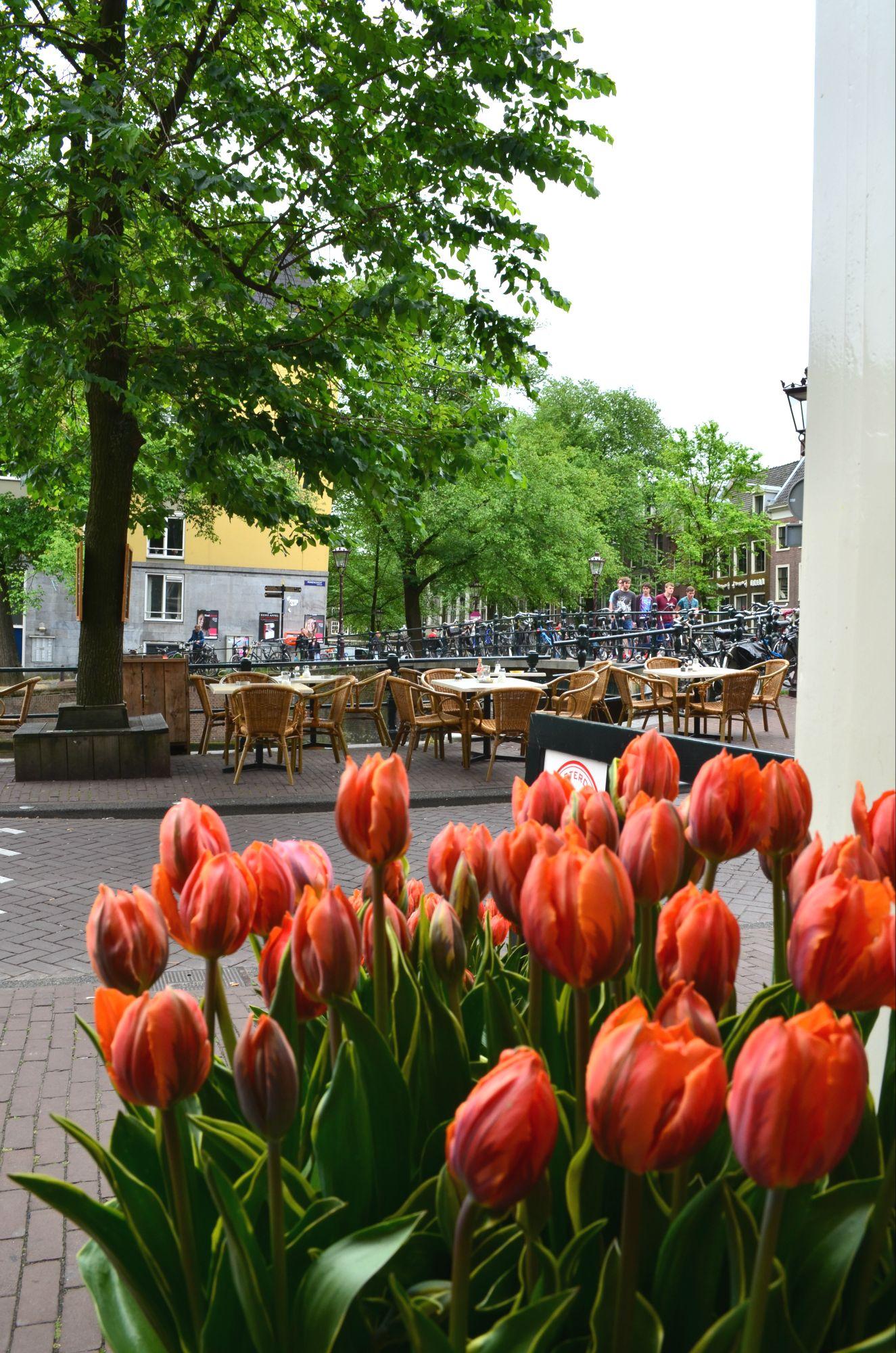 Amsterdam (42).jpg