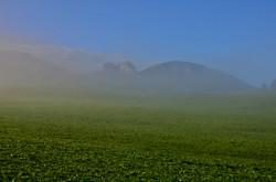 H0103 Breitenberg im Nebel.jpg