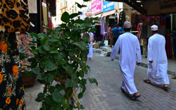 Dubai (118).jpg