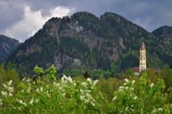 F0056 Pfronten-Berger Moos Kirchenspitze Kienberg.jpg