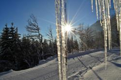 W0211 Eiszapfen Wintermorgen am Edelsberg.jpg
