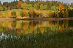 G0208 Herbstfarben am Weissensee.jpg