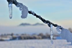 W0314 Eiszapfen am Stacheldraht Hintergrund Frey-undEisenberg.jpg