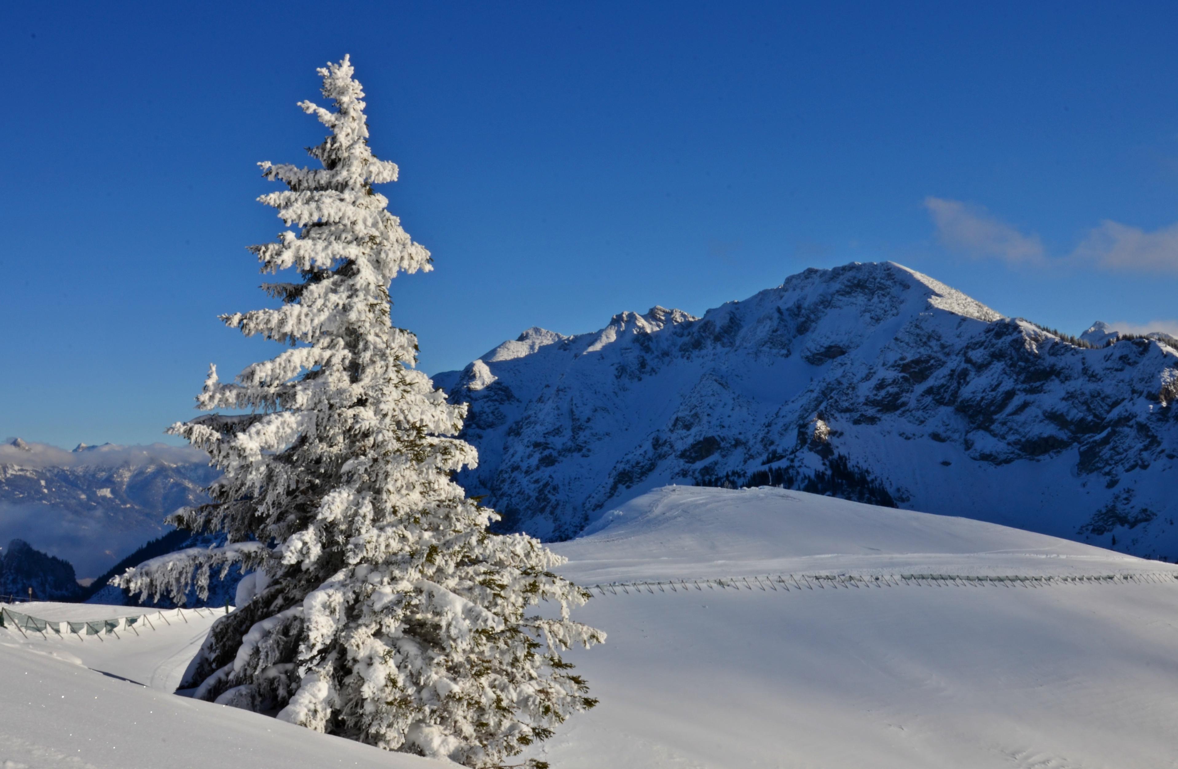 W0181 Wintertraum auf dem Breitenberg