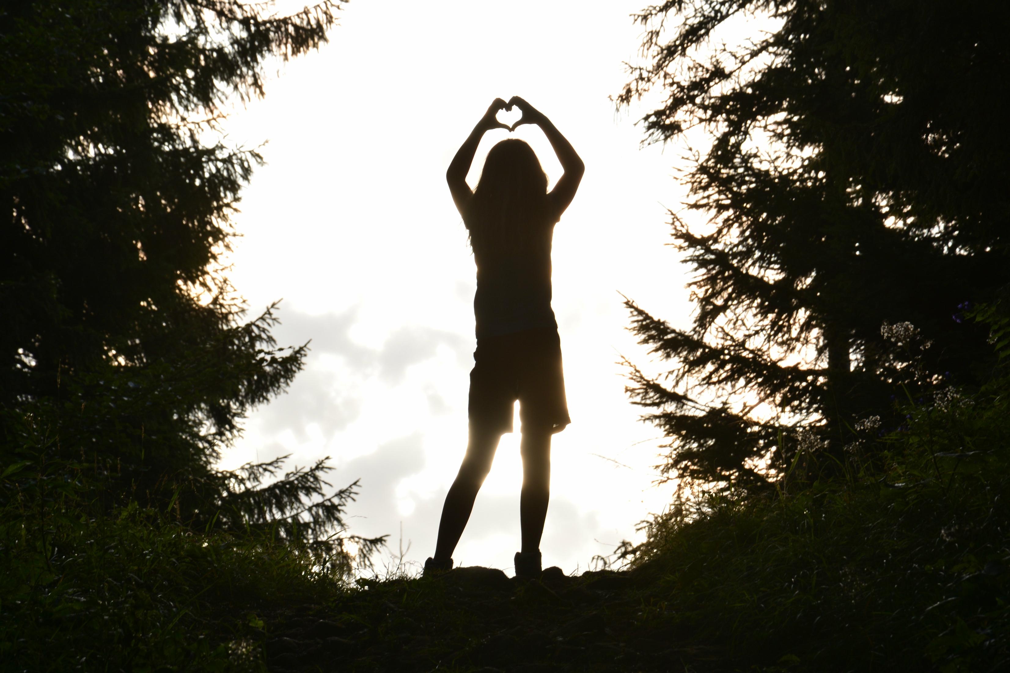 A0204 Schattenherz im Wald.jpg