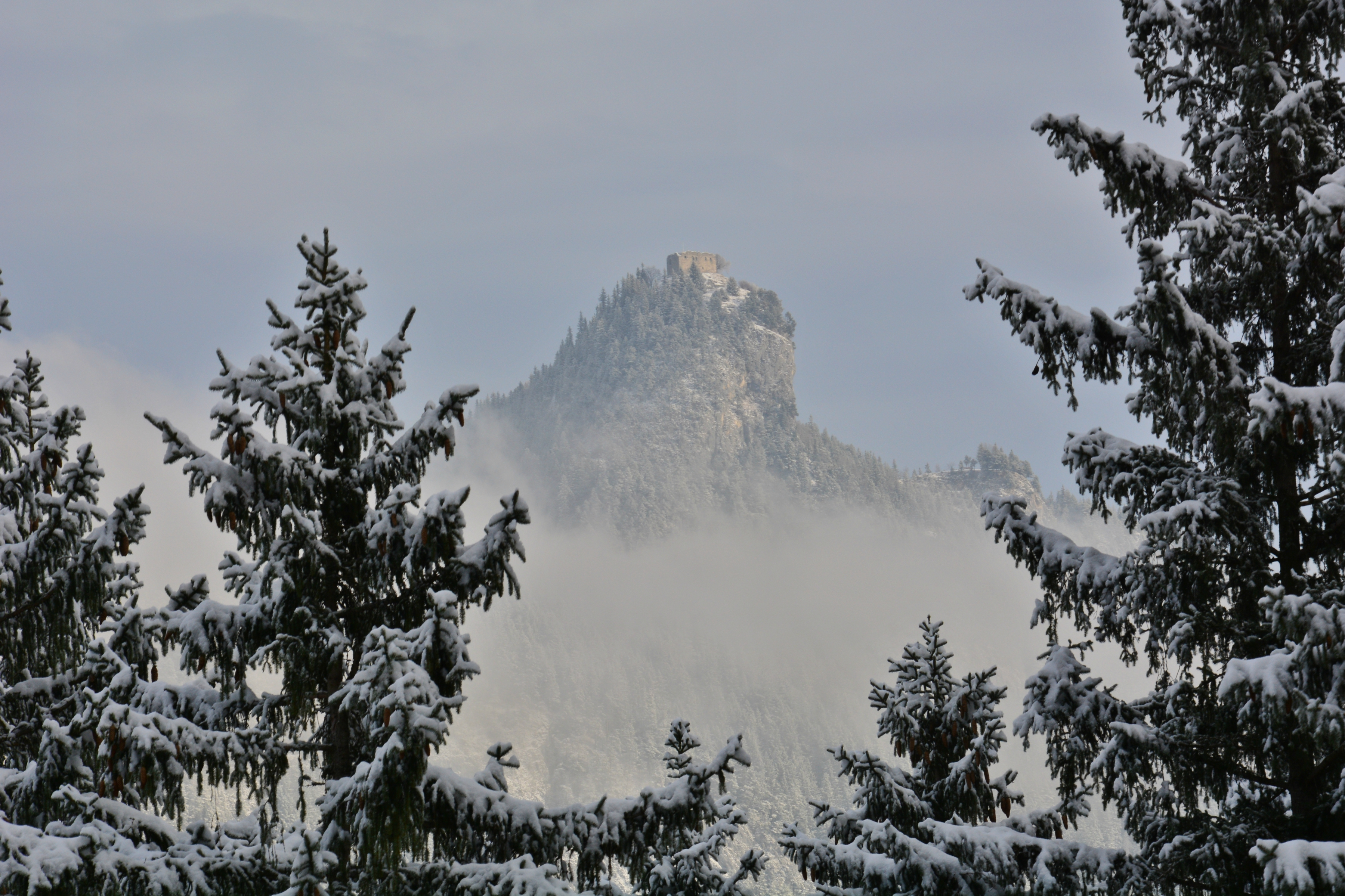 W0258 Ruine Falkenstein Winterwald.jpg