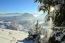 W0054 Winterpanorama vom Edelsberg.jpg