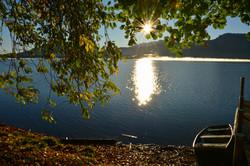 G0394  Morgensonne Herbstlaub Forggensee.jpg