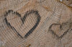 O0086 Holzstrukturherzerl