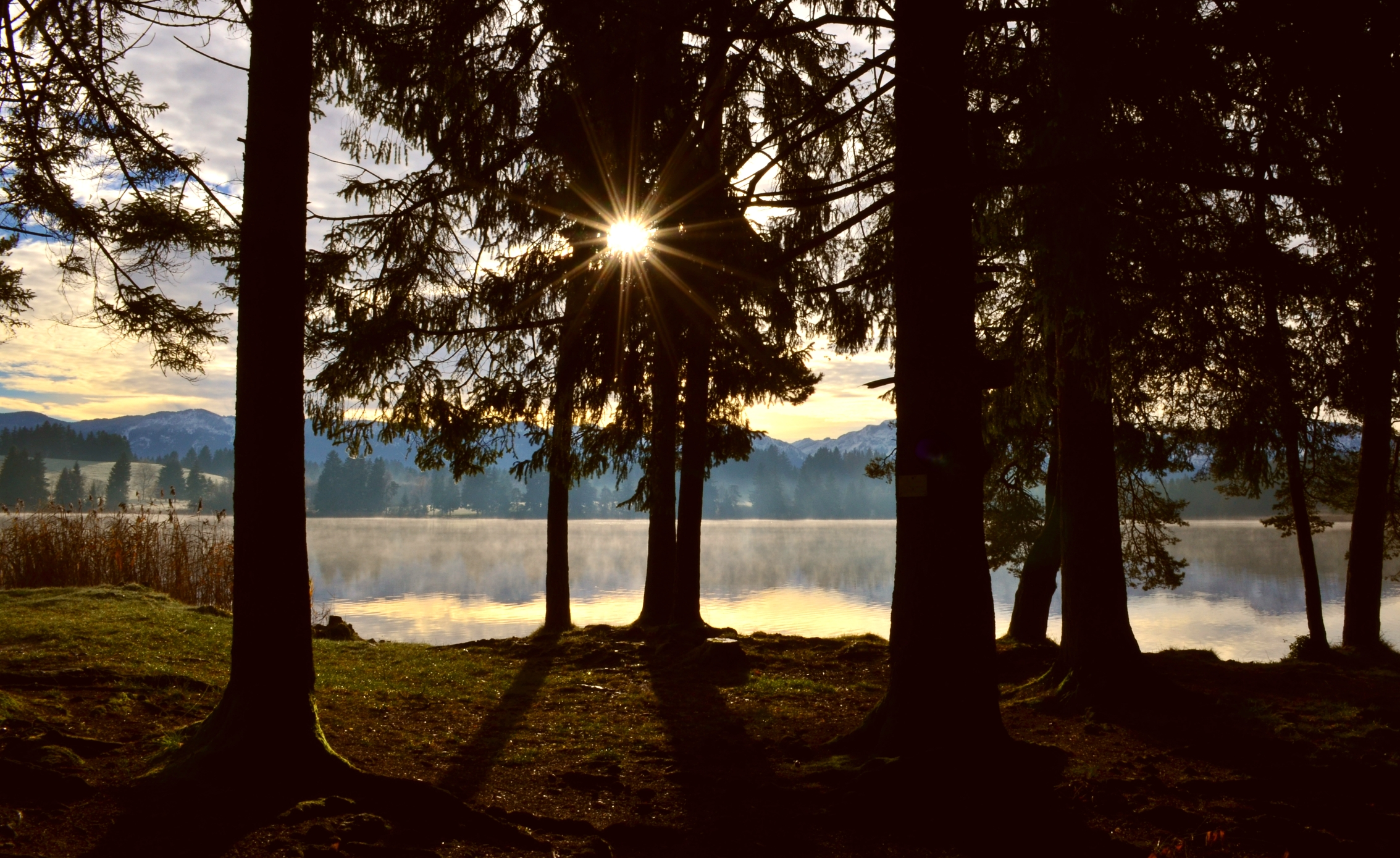 G0096 Waldlicht Schmuttersee