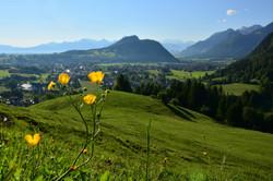 F0084 Morgentlicher Blick aufs Pfrontner Tal.jpg