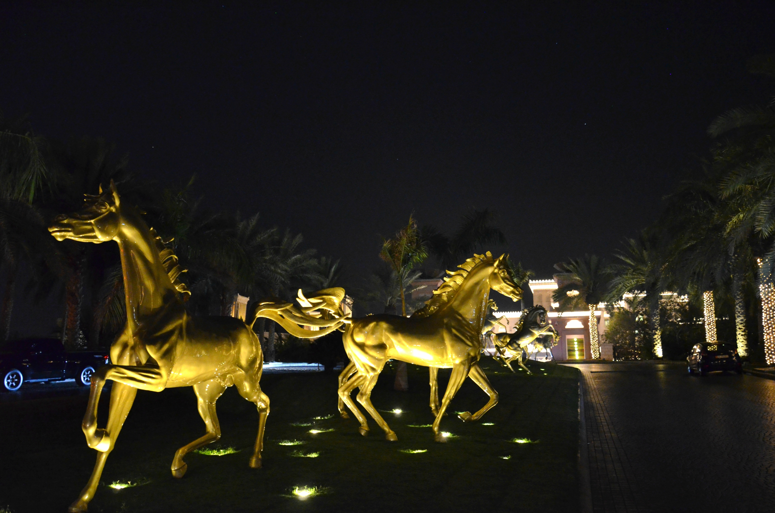 Dubai (24).jpg