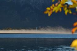 G0398 Scloss Hohenschwangau im Nebel Forggensee.jpg