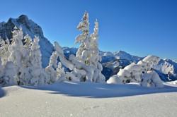 W0356 Verschneite Bergwelt.jpg