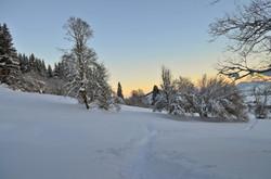 W0055_Wintermorgen_in_Röfleuten.jpg