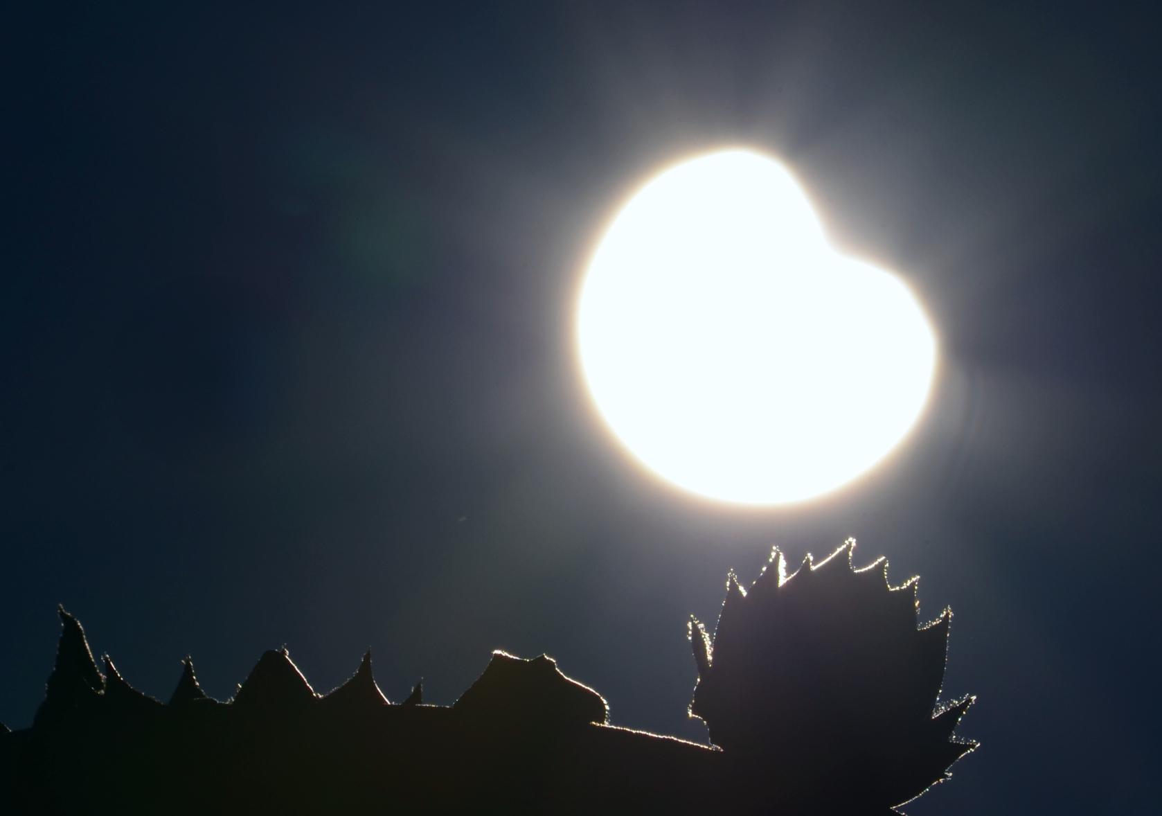 O0041 Sonnenfinsternis-Herz.jpg