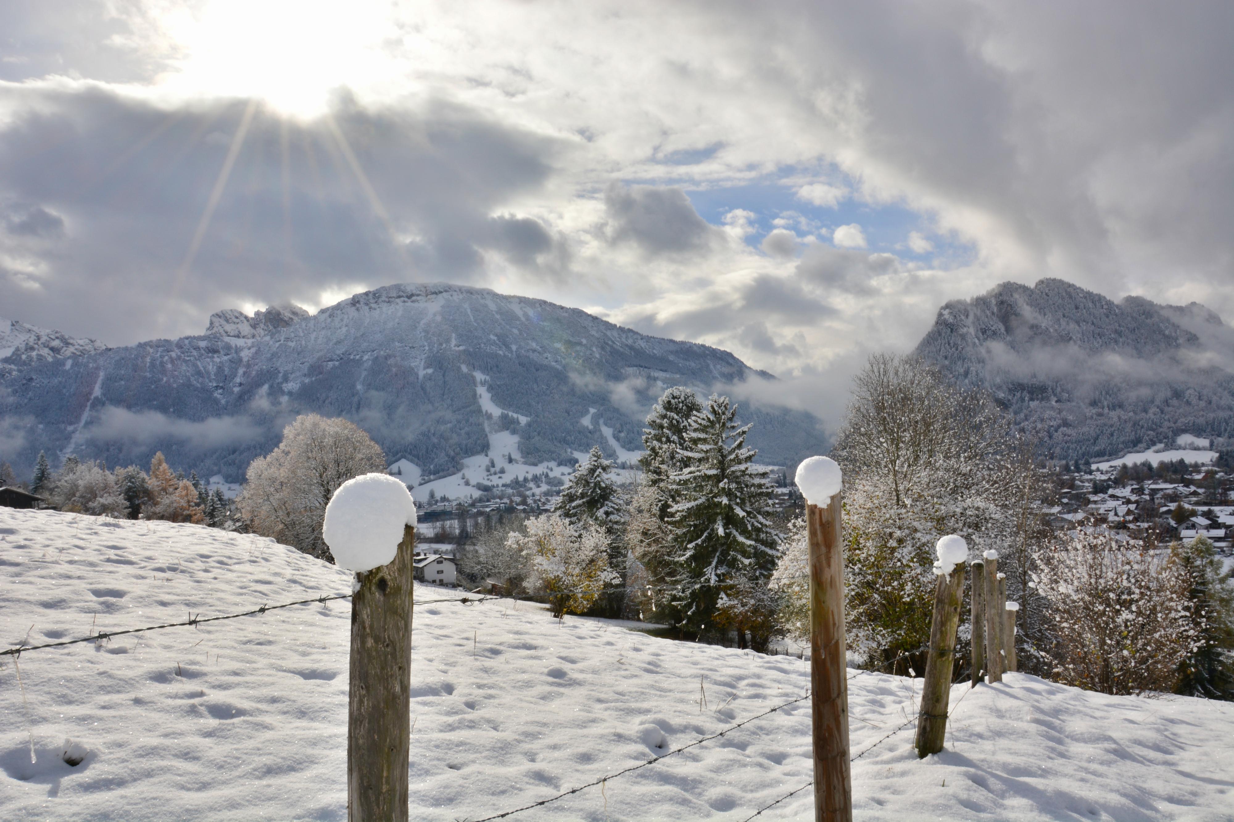 W0263_Schneehütchen_Zaun_in_Pfronten-Meilingen.jpg