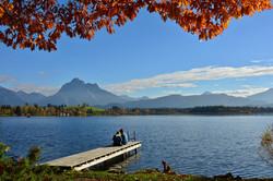 H0145 Herbstlaub am Hopfensee.jpg